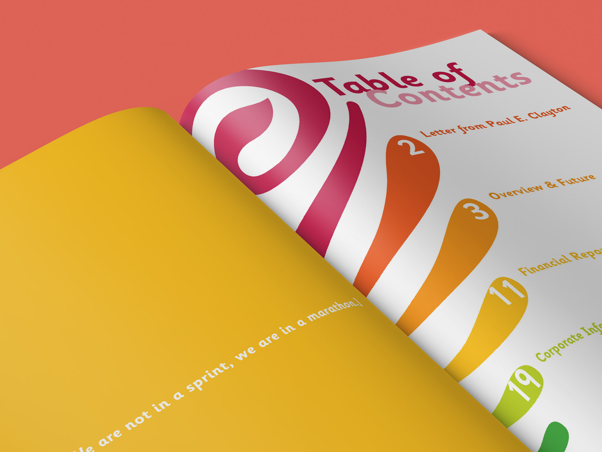 Jamba Juice Annual Report Table of Contents.